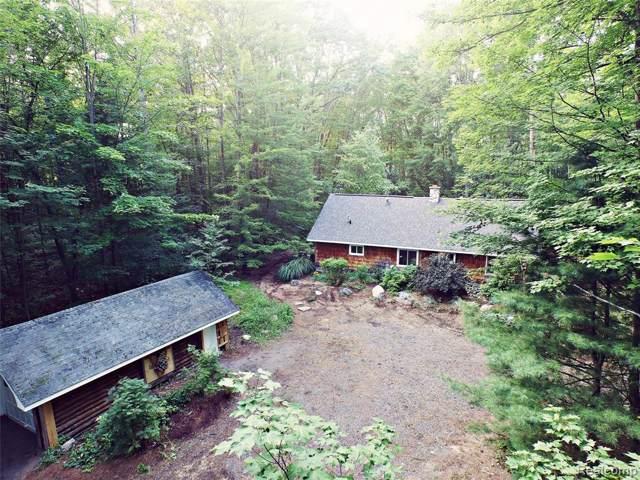 7304 W Higgins Lake Drive, Lyon Twp, MI 48653 (#219085160) :: The Buckley Jolley Real Estate Team