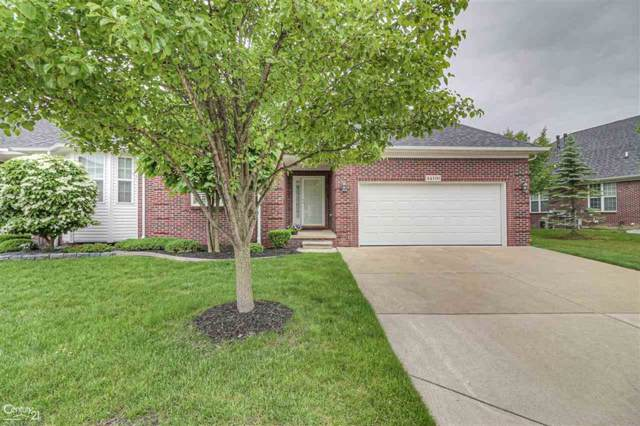 44190 Orion, Sterling Heights, MI 48314 (MLS #58031391461) :: The Toth Team