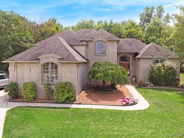 52125 Wembly Court, Shelby Twp, MI 48315 (#219085339) :: Springview Realty