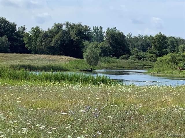 Lot 27 Little Lake Court, Brandon Twp, MI 48462 (#219086206) :: The Mulvihill Group