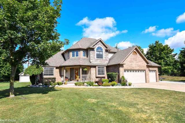 46821 Burt Court, Chesterfield Twp, MI 48047 (#58031391790) :: KNE Realty 360