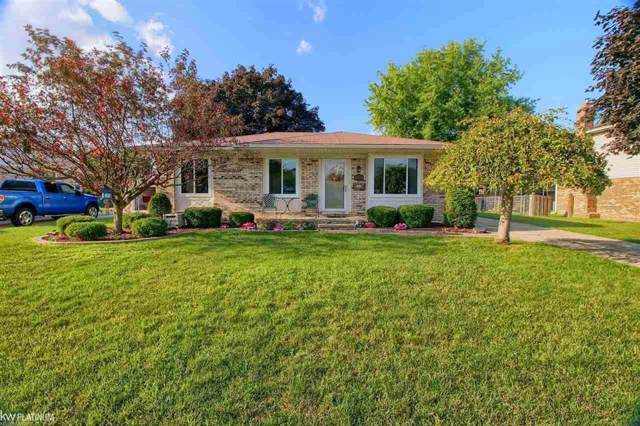 19325 Edward Ct, Clinton Twp, MI 48038 (#58031391797) :: KNE Realty 360