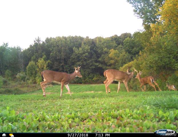 0000 Golf Vista Drive, Elba Twp, MI 48446 (#219087469) :: The Buckley Jolley Real Estate Team