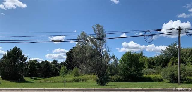 4076 Morrish Road, Swartz Creek, MI 48473 (#219088276) :: The Buckley Jolley Real Estate Team