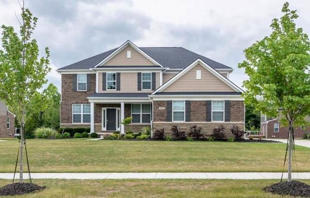 48313 Madeline Court, Canton Twp, MI 48187 (#543268370) :: The Buckley Jolley Real Estate Team