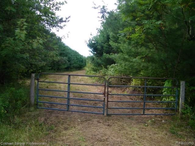 vacant E Bevens Road, Wells Twp, MI 48723 (#219090047) :: The Buckley Jolley Real Estate Team