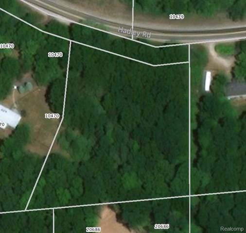 0 Hadley Road N, Lyndon Twp, MI 48137 (#219090245) :: The Buckley Jolley Real Estate Team
