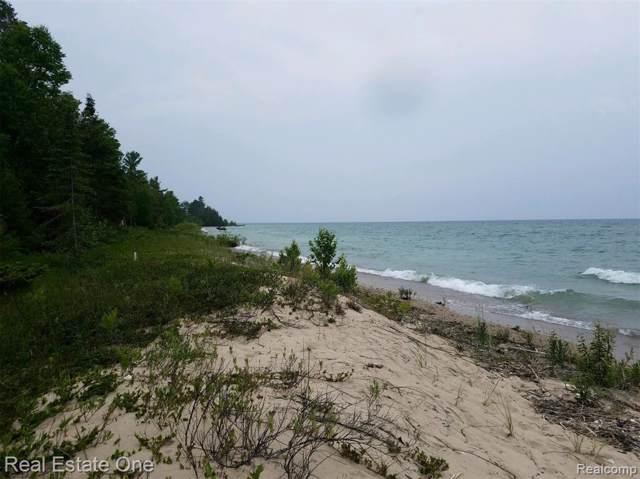 0 Beach Rd, Rogers Twp, MI 49779 (#219090286) :: Alan Brown Group