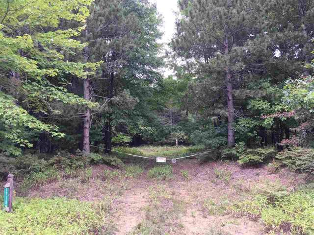 Marion Road Vacant Land, Brant Twp, MI 48614 (#5031393109) :: The Buckley Jolley Real Estate Team