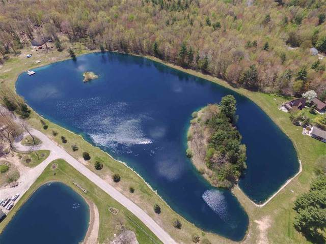 Lakeshore Drive V/L, ST CHARLES TWP, MI 48655 (#5031393122) :: The Buckley Jolley Real Estate Team