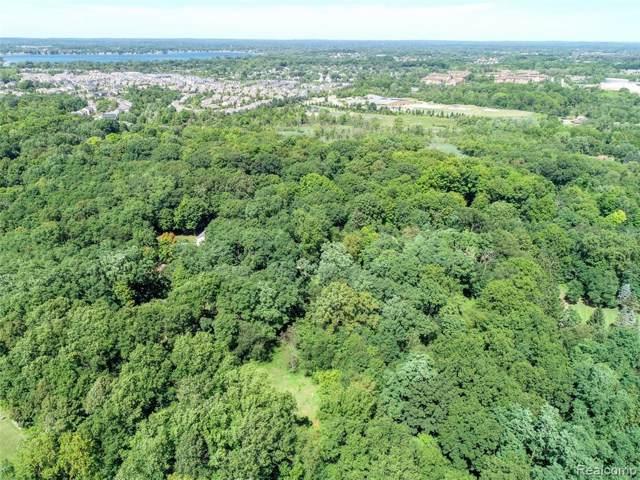 28645 Summit Court, Novi, MI 48377 (#219090825) :: The Buckley Jolley Real Estate Team