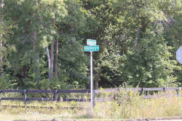 Ederer Road Vacant Land, Fremont Twp, MI 48626 (#5031393408) :: The Buckley Jolley Real Estate Team