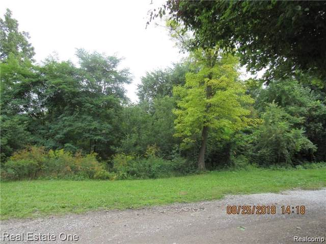 Vacant Bloomfield Street, Orion Twp, MI 48362 (#219091685) :: The Buckley Jolley Real Estate Team