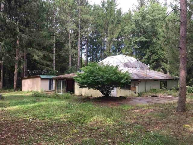 13311 Fergus Rd. #3, Brant Twp, MI 48616 (#5031393643) :: The Buckley Jolley Real Estate Team