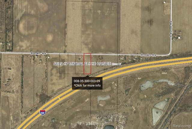 PARCEL 1 Brooks Road, Venice Twp, MI 48449 (#219092908) :: The Buckley Jolley Real Estate Team