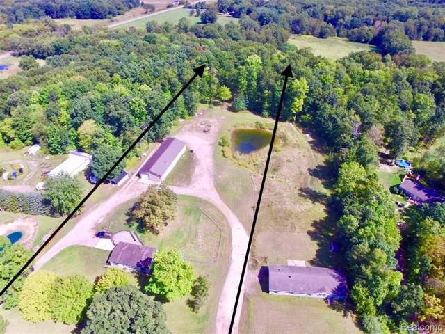 485 Bullis Road, Unadilla Twp, MI 48137 (#219093118) :: The Buckley Jolley Real Estate Team