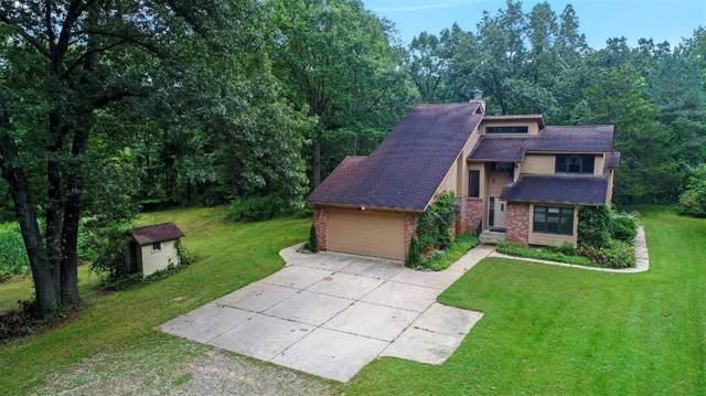 11701 Joslin Lake Rd, Lyndon, MI 48137 (#543268689) :: The Buckley Jolley Real Estate Team