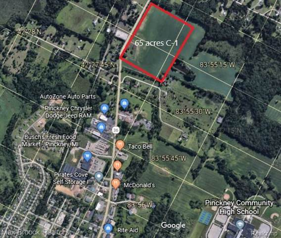 1480 E M 36 Highway, Putnam Twp, MI 48169 (#219093875) :: The Buckley Jolley Real Estate Team