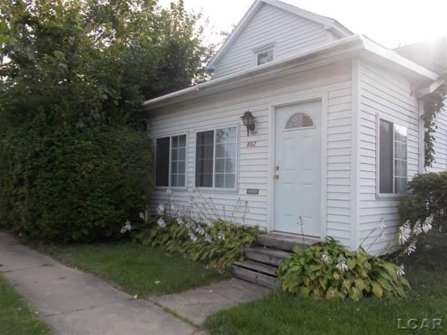 802 Division Street, Adrian, MI 49221 (#56031394042) :: RE/MAX Nexus