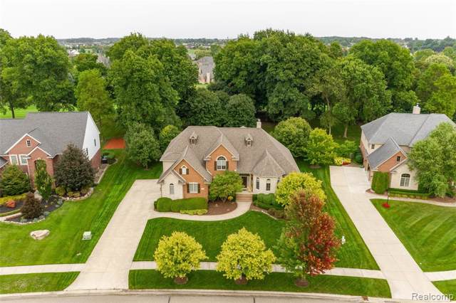 23743 Point O Woods Court, Lyon Twp, MI 48178 (MLS #219094747) :: The Toth Team