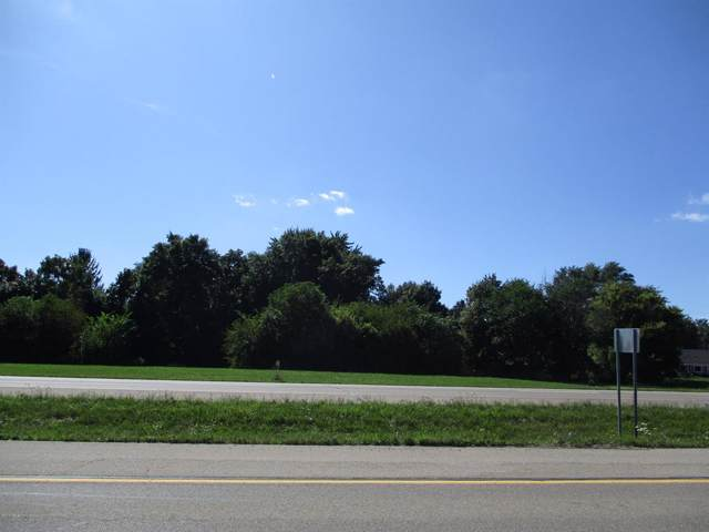 917 N Us-127, St Johns, MI 48879 (MLS #630000240824) :: The Toth Team