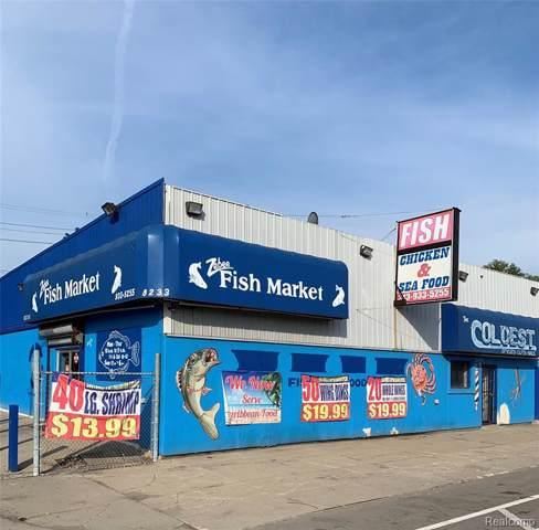 8233 Livernois Avenue, Detroit, MI 48204 (MLS #219095494) :: The Toth Team