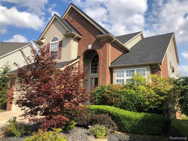 50269 Cressnut Court, Northville Twp, MI 48168 (#219095787) :: The Buckley Jolley Real Estate Team