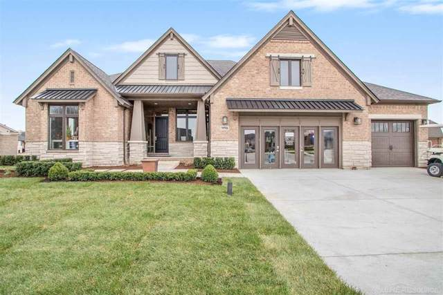 53377 Winter Pine, Shelby Twp, MI 48315 (#58031394623) :: The Alex Nugent Team | Real Estate One