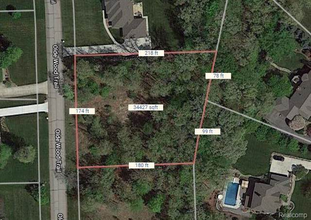 0 Olde Wood Trail, Tyrone Twp, MI 48430 (#219096096) :: The Buckley Jolley Real Estate Team