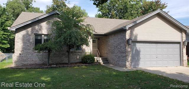 6065 Poplar Avenue, Sterling Heights, MI 48314 (MLS #219096236) :: The John Wentworth Group