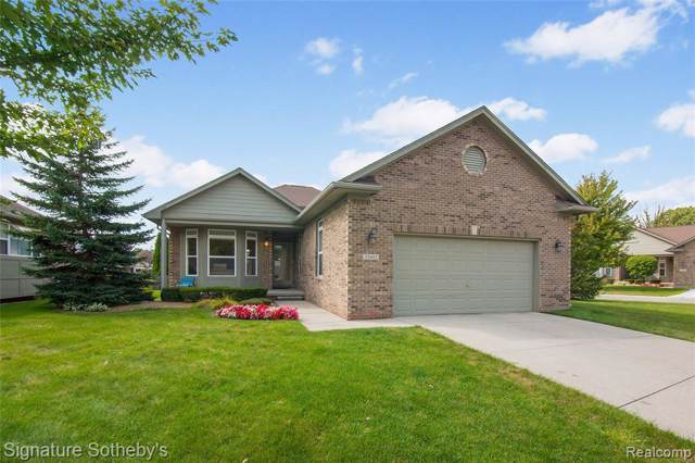35483 Montecristo Drive, Sterling Heights, MI 48310 (#219096344) :: RE/MAX Nexus
