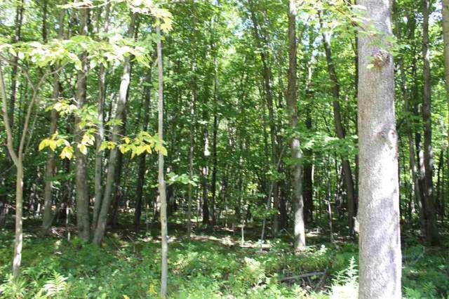 V/L Lot 4 Brookshire Drive, Chesaning Twp, MI 48616 (#5031394795) :: Real Estate For A CAUSE
