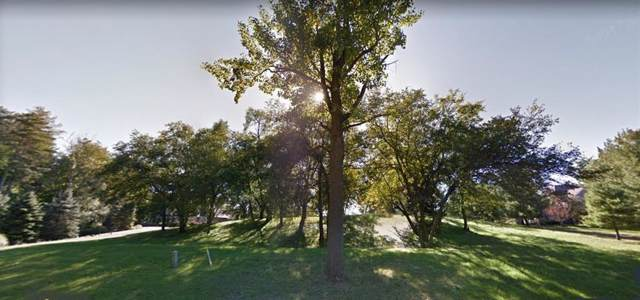 3678 Tims Lake Blvd Lot 70, Grass Lake Twp, MI 49240 (#543268898) :: GK Real Estate Team