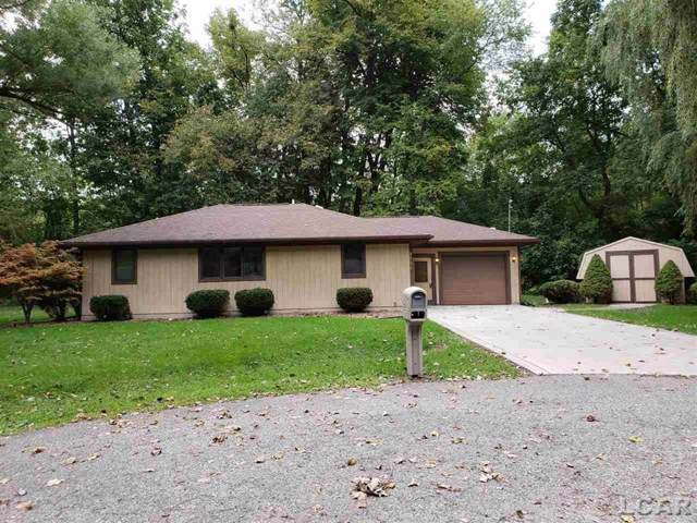 4794 Hooks Mill, Adrian Twp, MI 49221 (#56031394819) :: RE/MAX Nexus