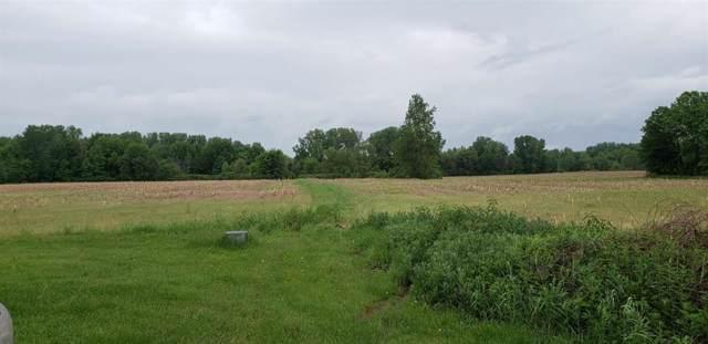 12920 Calhoun Road, London Twp, MI 48160 (#543268933) :: The Buckley Jolley Real Estate Team