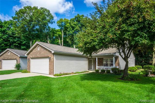 39292 Armstrong Lane, Westland, MI 48185 (MLS #219097166) :: The Toth Team