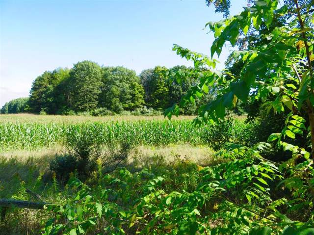 1843 Roosevelt, Sheridan Township  Remus Michigan, MI 49340 (#543268938) :: The Buckley Jolley Real Estate Team