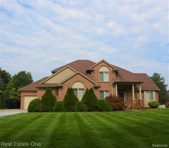 5681 Robert Street, Shelby Twp, MI 48316 (#219097383) :: The Alex Nugent Team | Real Estate One