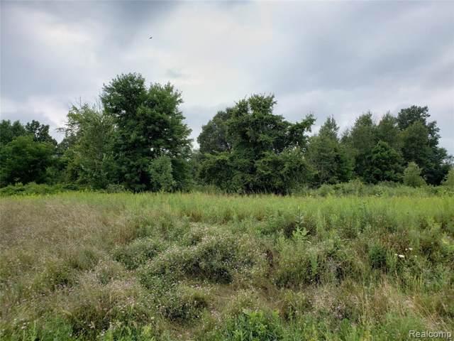 Par 11 Maplefield, Conway Twp, MI 48418 (#219097478) :: The Alex Nugent Team | Real Estate One