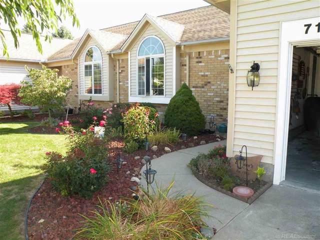 7106 B R Noble, Lexington, MI 48450 (#58031395070) :: Duneske Real Estate Advisors