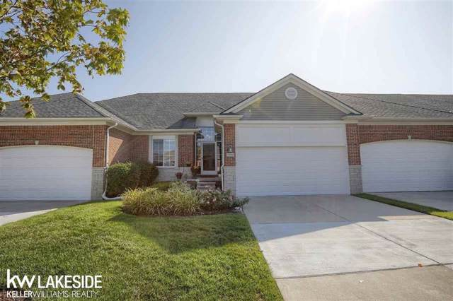 49290 Village Pointe Drive, Shelby Twp, MI 48315 (#58031395071) :: The Alex Nugent Team   Real Estate One
