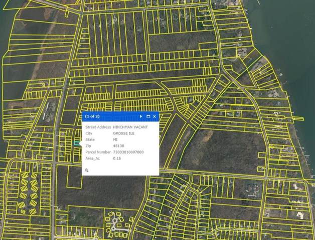 0 Hinchman, Grosse Isle, MI 48138 (#543268973) :: The Mulvihill Group