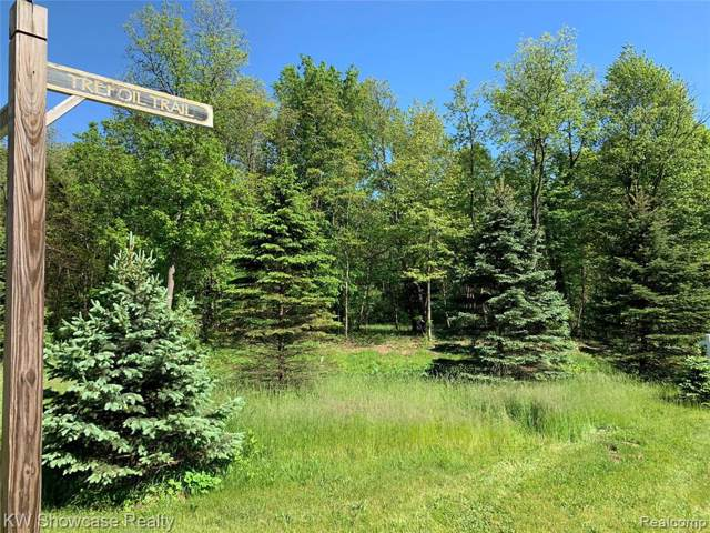VACANT LOT 59 Trefoil Trail, Groveland Twp, MI 48462 (#219098653) :: The Buckley Jolley Real Estate Team