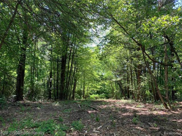 VACANT LOT 58 Trefoil Trail, Groveland Twp, MI 48462 (#219098657) :: The Buckley Jolley Real Estate Team