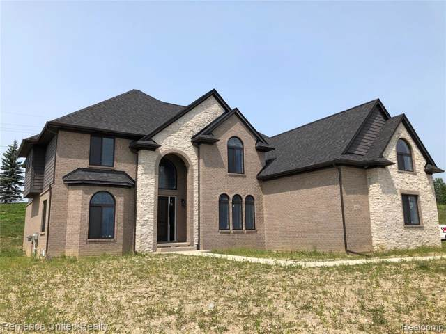 10552 Stoney Pointe Drive, Green Oak Twp, MI 48178 (#219100272) :: The Mulvihill Group