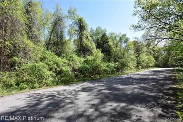 Par 3 Shores Point Drive, Genoa Twp, MI 48116 (#219100326) :: The Buckley Jolley Real Estate Team