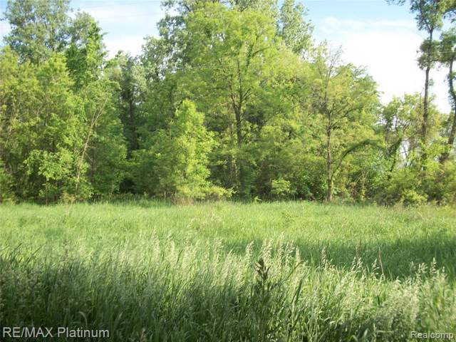 VACANT Roberts Road, Iosco Twp, MI 48137 (#219102186) :: The Buckley Jolley Real Estate Team