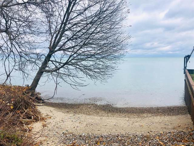 0000 Lakeshore Lakeshore, Worth Twp, MI 48450 (#219104352) :: The Buckley Jolley Real Estate Team