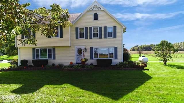 36220 Weber, Richmond Twp, MI 48062 (#58031397194) :: The Alex Nugent Team | Real Estate One