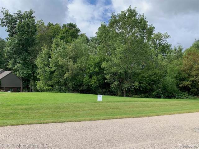 10705 Deer Ridge Trail, Rose Twp, MI 48442 (#219104758) :: The Buckley Jolley Real Estate Team